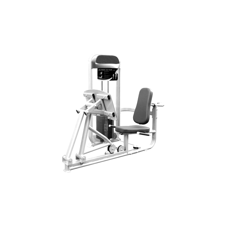 Leg Press / Calf Raise Resistance Machine